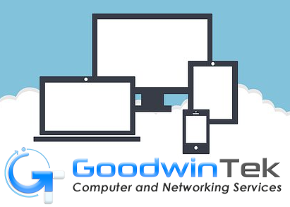GoodwinTek Backup